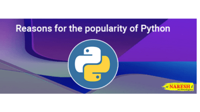 Reasons for the popularity of Python